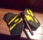 Butterfly_back